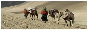 Könnten doch alle wie Nomaden wandern